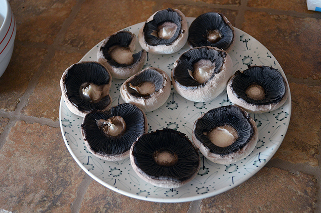 funghi-in-crosta-con-taleggio-10